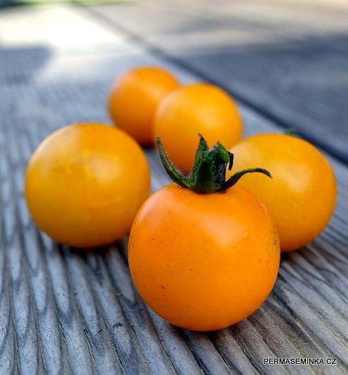 Goldkrone | rajče tyčkové | PERMASEMÍNKA.CZ