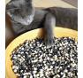 Yin Yang| fazole keříčkový | PERMASEMÍNKA.CZ